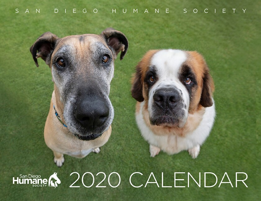 SPCA2020 Calendar Cover.jpg