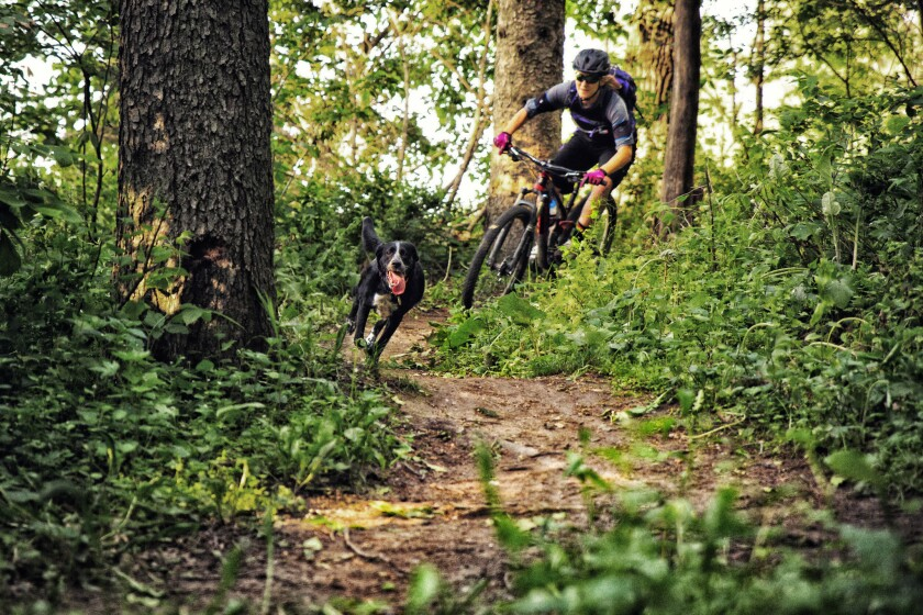 Mountain bike tour in Bend, Ore.