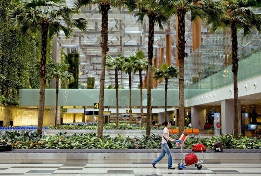 Palm trees and other greenery lend Singapore's Changi Airport a note of serenity.