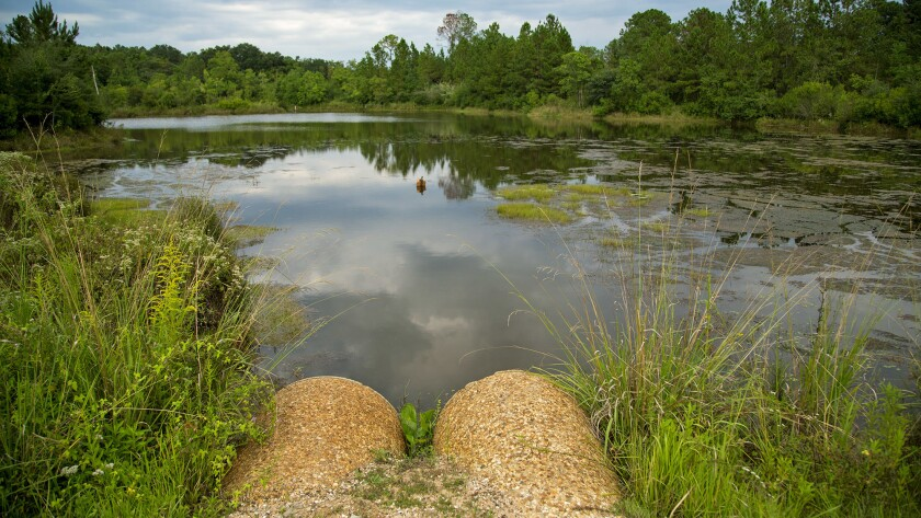 Residents say this pond in Eight Mile, Ala., is contaminated by a chemical used to add an odor to natural gas.