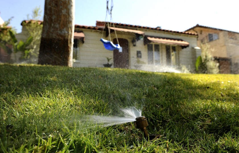 Reducing outdoor irrigation will be a primary focus of mandatory statewide water use cuts.
