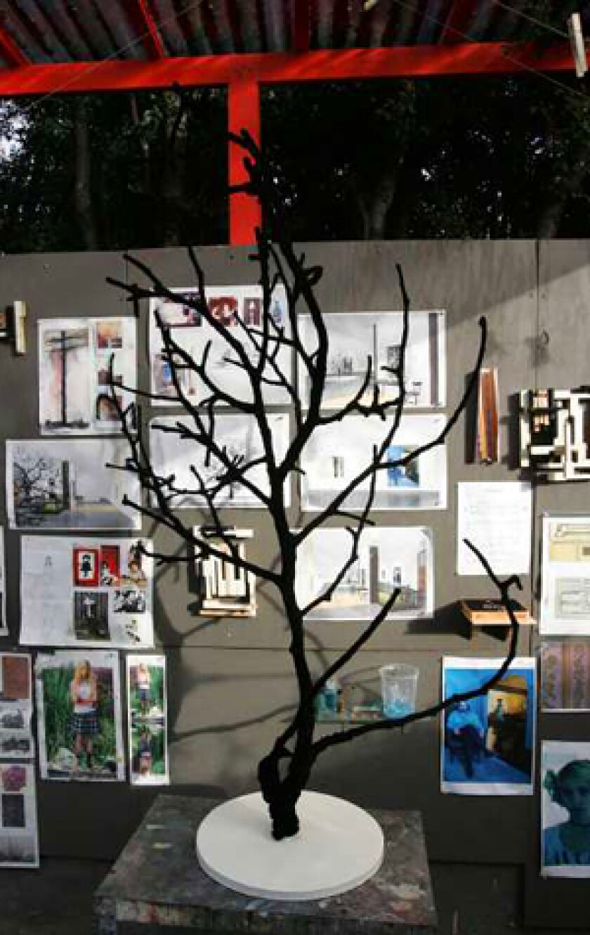BRANCHING OUT: Rebecca Campbell's work includes sketches and a black velvet-covered tree.