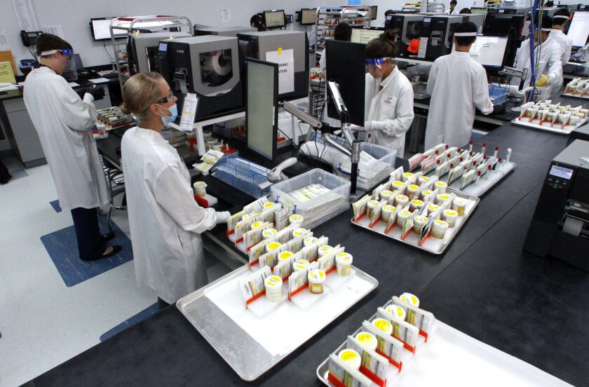 In this file photo, Millennium Labs' employees worked through the process of bar-code identification for the thousands of urine samples that arrived daily from around the country to the Rancho Bernardo-based lab.