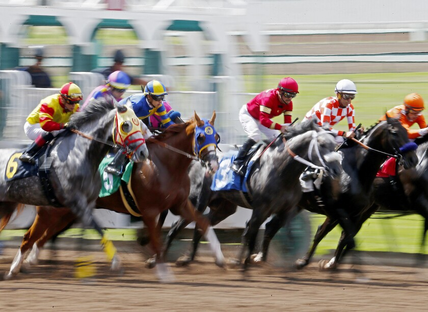 Horses and jockeys charge out of the starting gate during a race at the Los Alamitos Race Course.