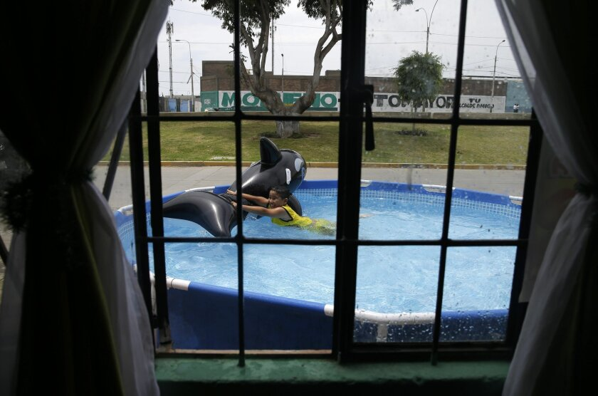In this Sunday, Feb. 15, 2015 photo, a boy plays with an inflatable shark in a pool in front of his home in Callao, Peru. The heat in and around Peru's sprawling capital can be intense in February, the heart of the Southern Hemisphere's summer, and residents of its poor neighborhoods are cooling themselves by setting up plastic pools on the street in front of their homes. (AP Photo/Martin Mejia)