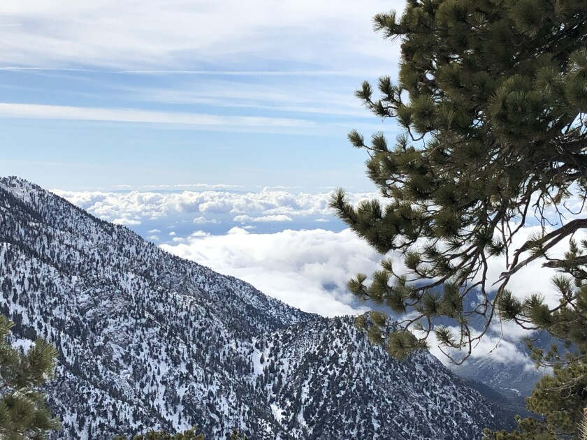 On top of the world at Mt. Baldy