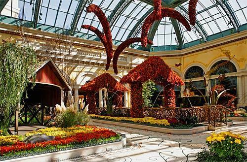 Las Vegas flower show