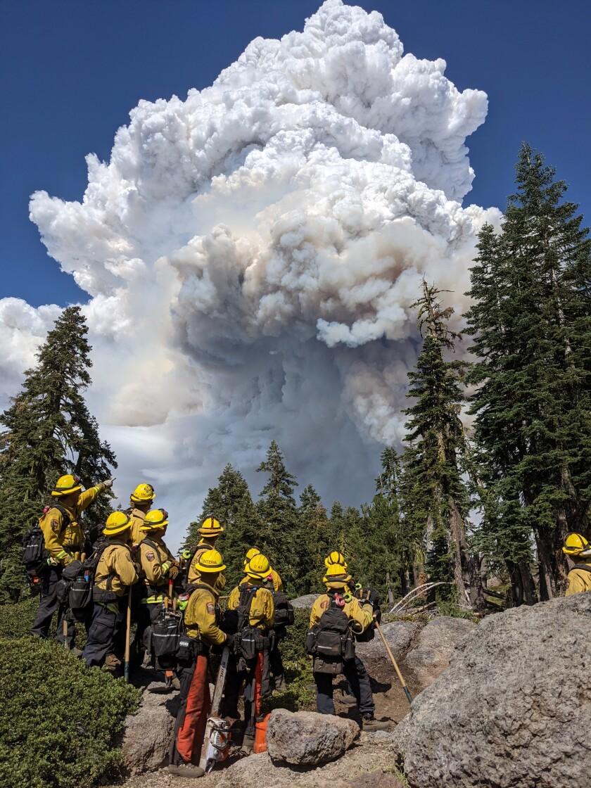 A strike team from the Cal Fire Santa Clara Unit observes the Dixie fire