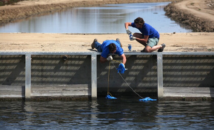 Water samples are taken for testing from a canal in the Cawelo Water District near Bakersfield in 2015. A researcher who has suggested that exposure to toxic chemicals can be good for humans is helping to shape Environmental Protection Agency policies.