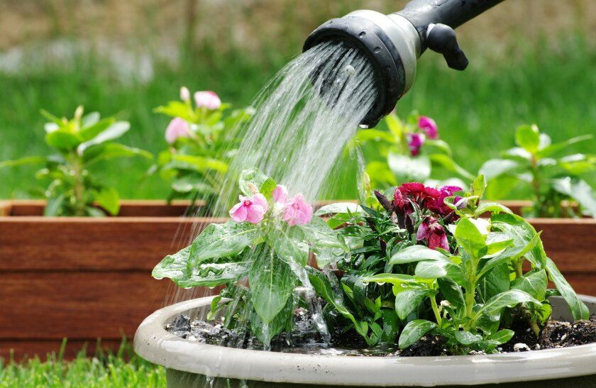 Save water by having a shut-off valve on every garden hose.