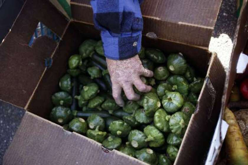 A man reaches into a box of squash at a food bank giveaway in Groveland.