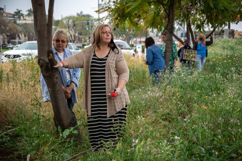 Barbara Sessions (right) and Betty McMillen stand in protest next to Jacaranda trees slated to be cut down in Lakeside.