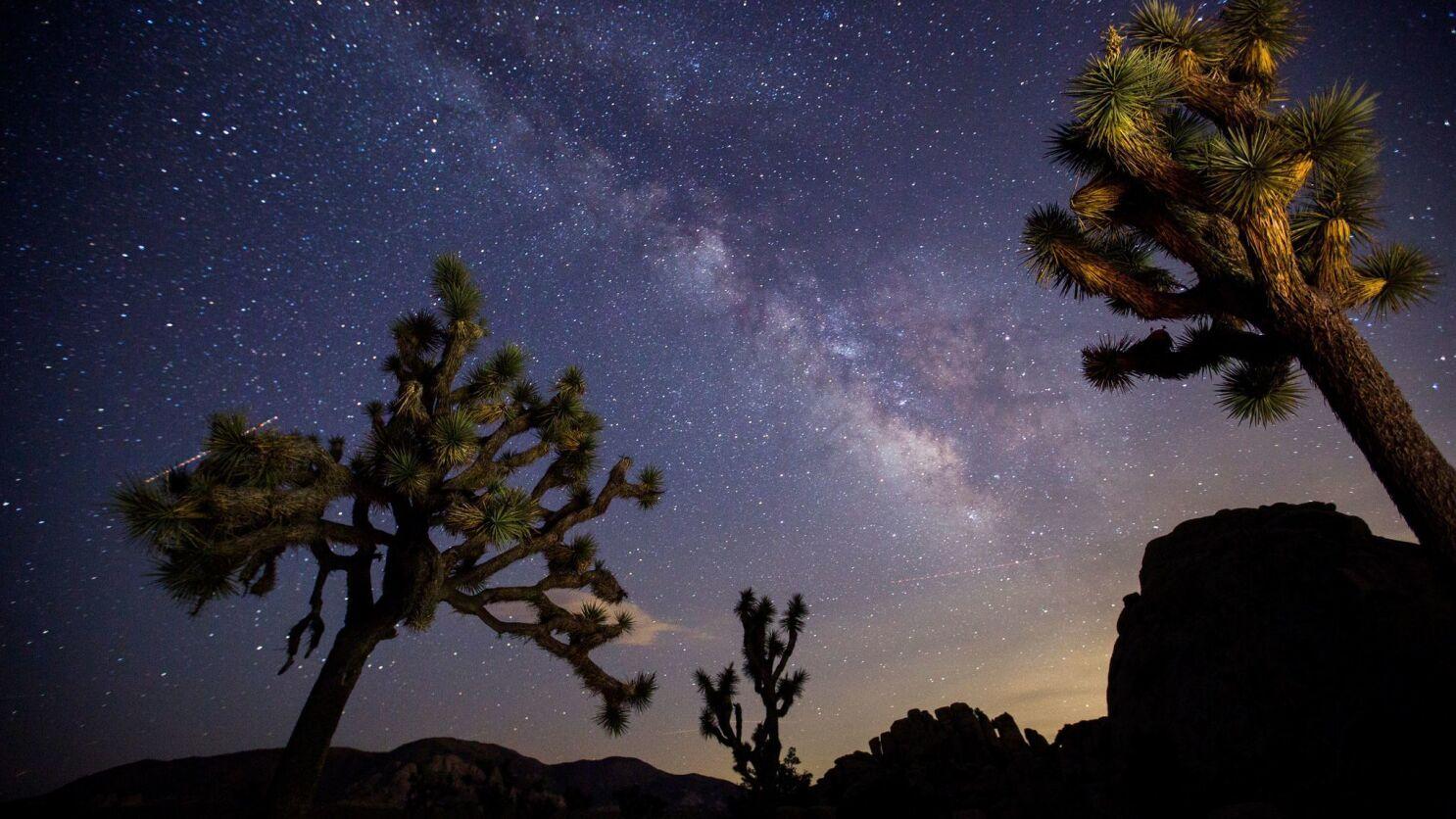 Dark Sky Designation Puts Joshua Tree National Park In A New