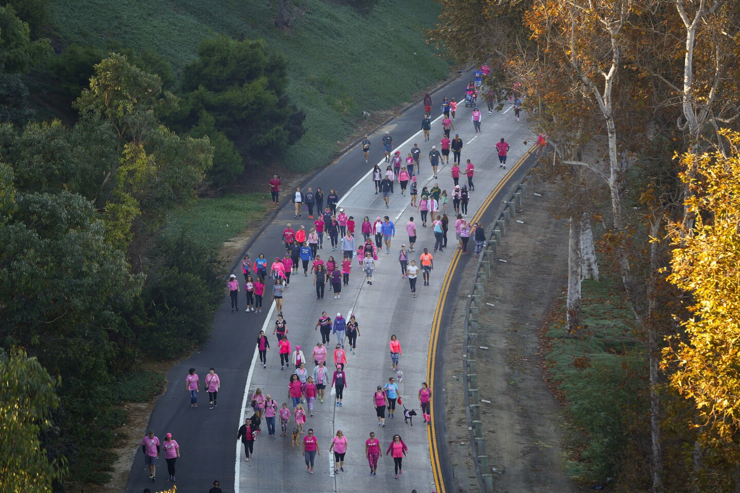 Making Strides Against Breast Cancer in San Diego