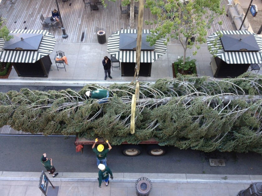 Christmas spirit rolls into the Americana at Brand, all 100-plus feet of it