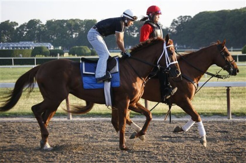 Race horse Uptowncharlybrown, foreground, jogs on the track at Belmont Park in Elmont, N.Y. on Wednesday, June 2, 2010. Uptowncharlybrown will run in the 142nd Belmont Stakes, the final leg of the Triple Crown and New York's premier horse race, at the track on Saturday.(AP Photo/Peter Morgan)