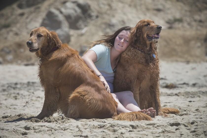 Pets and empathy