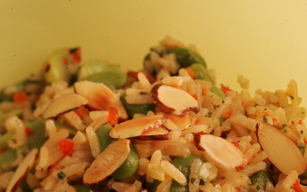 Fava and rice salad with fines herbes vinaigrette