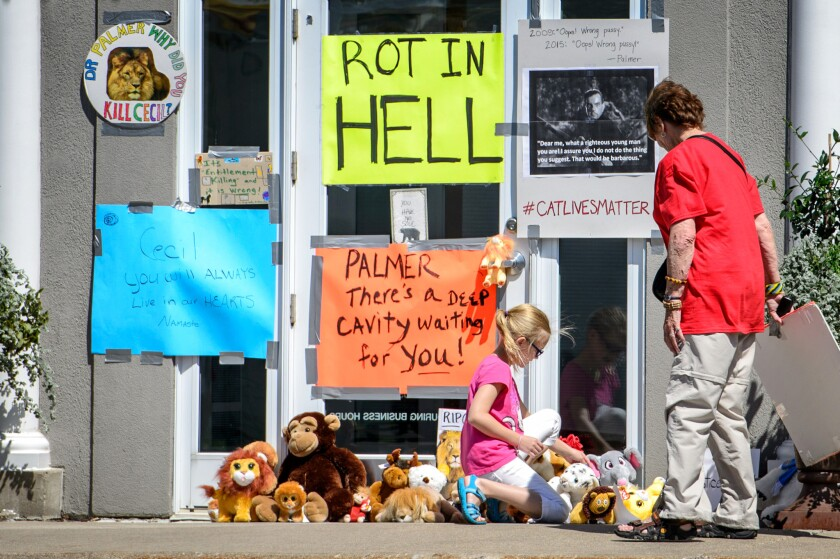 Protesters leave signs and stuffed animals in front of Dr. Walter Palmer's dental practice in Bloomington, Minn., this week.