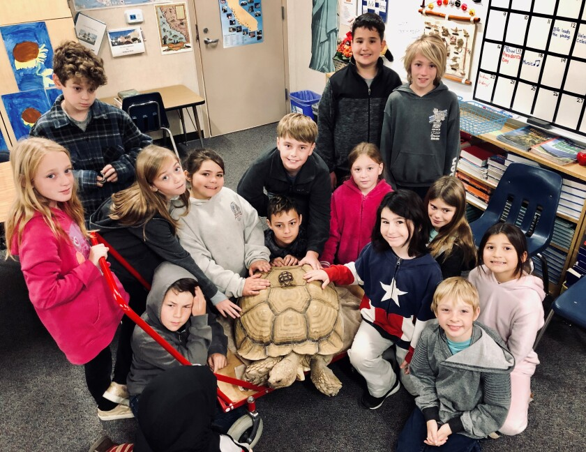 Front left, Isaac Hubscher, front right, Sam Mitchell; middle row, Kinsley McGaughy, Finley Hutchings, Selah Winters, Shane Rollins, Lunabella Fowles-Landis, Theo Majo, Olivia Chandler, Juliana Quiroz; back, Garrett Maher, Quinn Warren, Abraham Yanez and Bryce Roberts, with Raft the giant tortoise, 43 years old and teeny tortoise hitching a ride, 8-month old Tortuga, both African Spurred Tortoises.