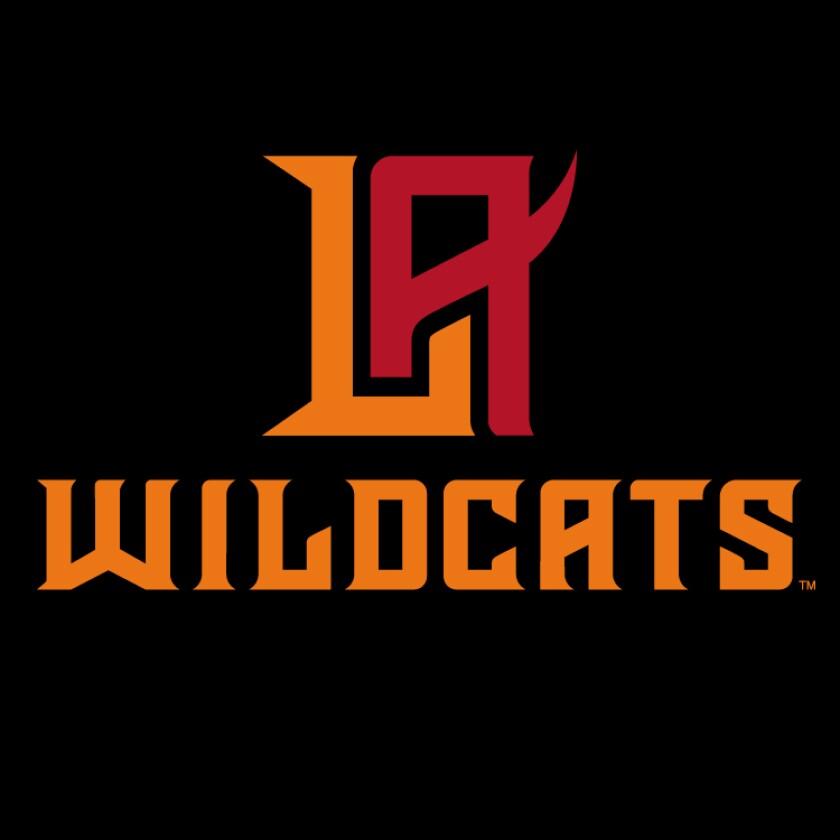 WildcatsDark.jpg
