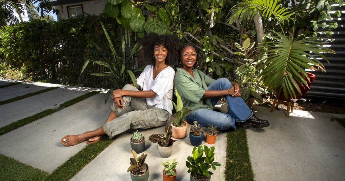 More than plant care: L.A. plant shop offers plant parents 'Self Care in a Box'