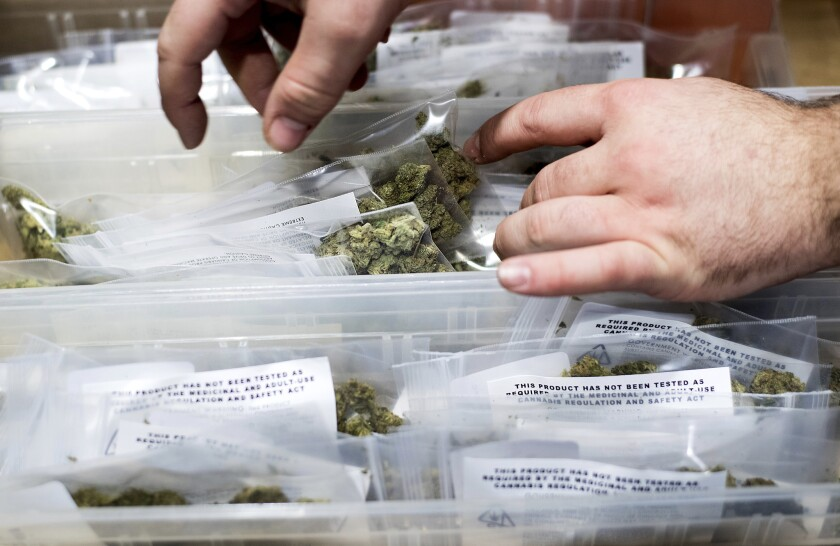 California's legal pot market is being ushered in with a sprawling, untested system to transport buds and products around the state. The so-called marijuana distributor is a kind of skeleton connecting the state's emerging industry of growers, sellers and manufacturers.