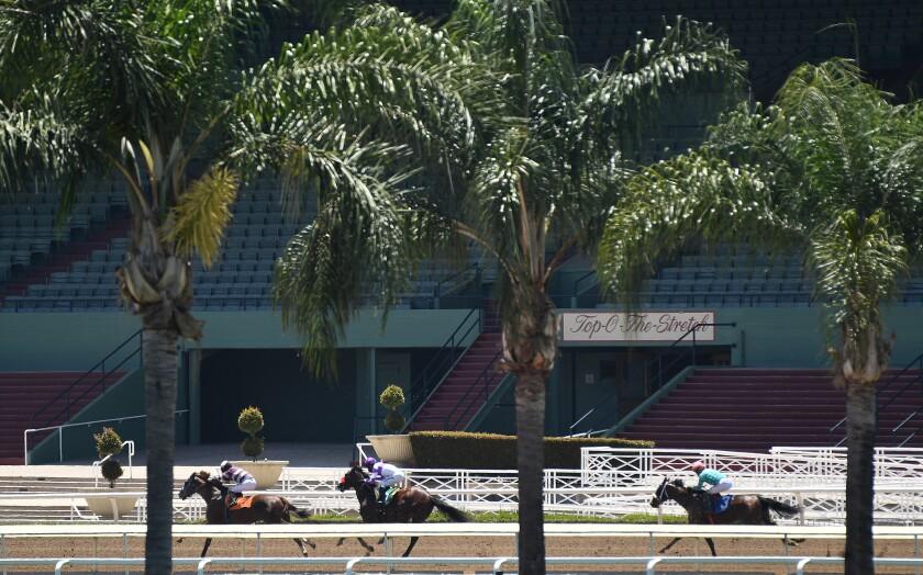 Course de chevaux samedi avec des stands vides en arrière-plan au parc Santa Anita.