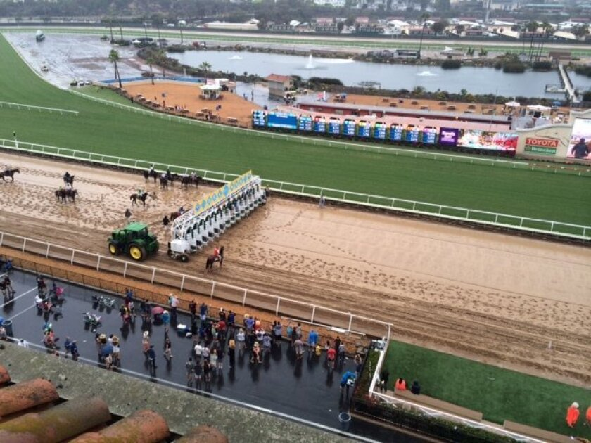 A record rainfall disrupted racing on the turf at Del Mar, but the new main track withstood the rain as Week One went in the books showing attendance and betting handle down.