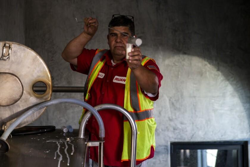 TURLOCK, CALIF. - OCTOBER 25: Ben Zamarripa, a truck driver for Ruan, takes samples from the milk ho
