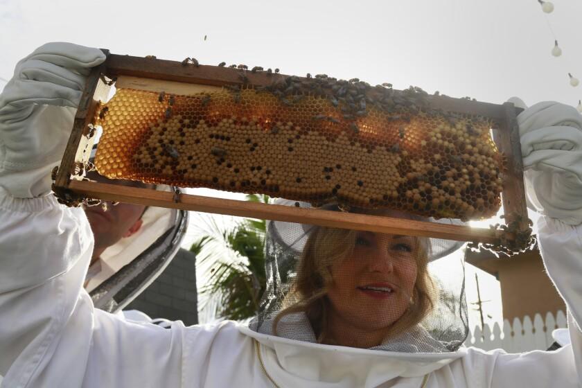 Katrina at Girl Next Door Honey