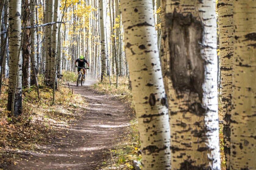Chasing Epic, a new mountain biking travel company for experienced cyclists, takes rider to places like Kenosha Pass in the Rocky Mountains southwest of Denver.