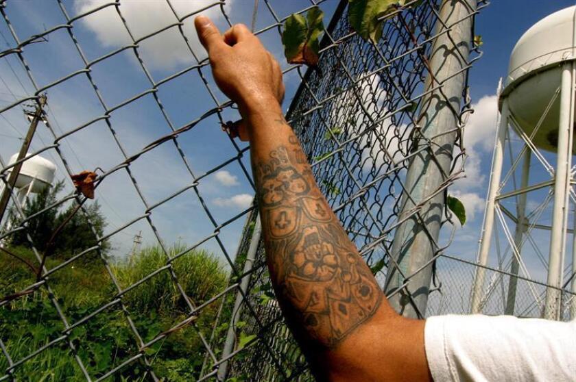 """Un miembro de la """"ñeta"""" organización surgida en los 70 para evitar abusos en las cárceles puertorriqueñas posa en una de las cercas que bordean el complejo correccional de Bayamón, en Puerto Rico. EFE/Archivo"""