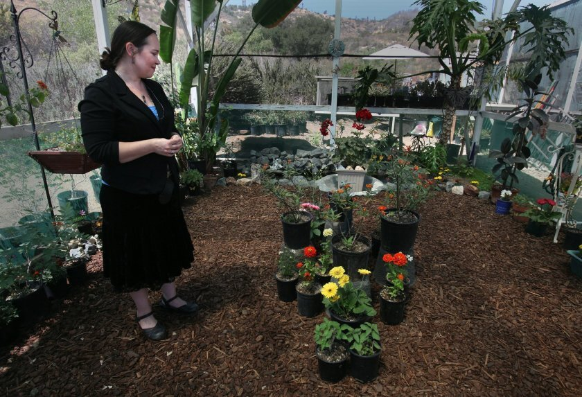 In 2015, Sabrina Lukosky, a long-time merchant of local produce, flowers and honey, talked to the Union-Tribune about teaming up with a butterfly advocate to create vivarium at her roadside shop in Bonsall. In October 2019, Lukosky was found dead in the Encinitas residence she shared with boyfriend Henry Cowen. He has been charged with murder, and has pleaded not guilty.