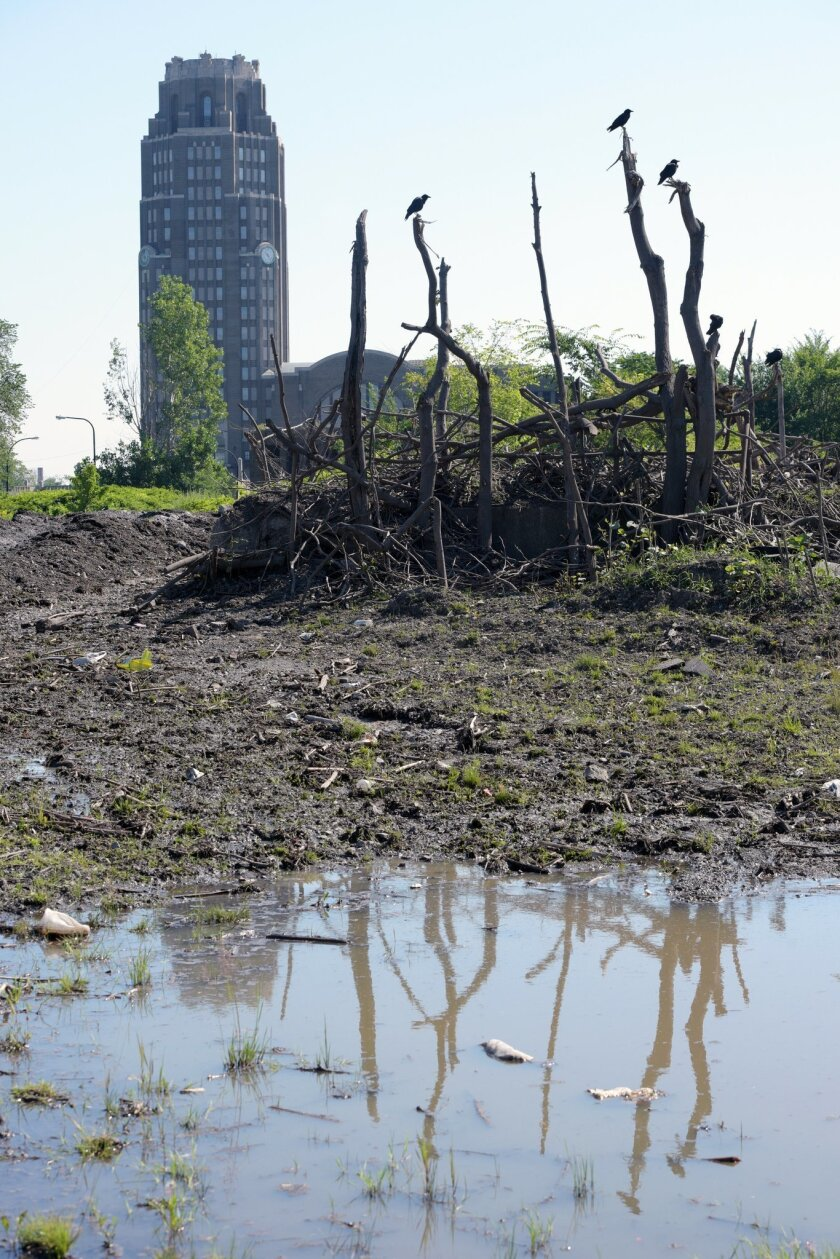 Crows perch on dead branches in front of Buffalo's Central Terminal as the dirt covered snow pack, dumped eight months ago, creates pools of water as it slowly melts around the abandoned train station vacant lot in Buffalo, N.Y., Tuesday, July 28, 2015. City crews dumped snow in the lots after a lake-effect storm dumped more than 7 feet on parts of Buffalo and the surrounding area last November. Eight months later, some of it is still there.(AP Photo/Gary Wiepert)