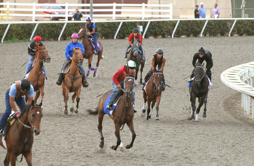 Jockeys and exercise riders work out their horses early this morning on the Del Mar race track in preparation for the racing season that begins tomorrow.