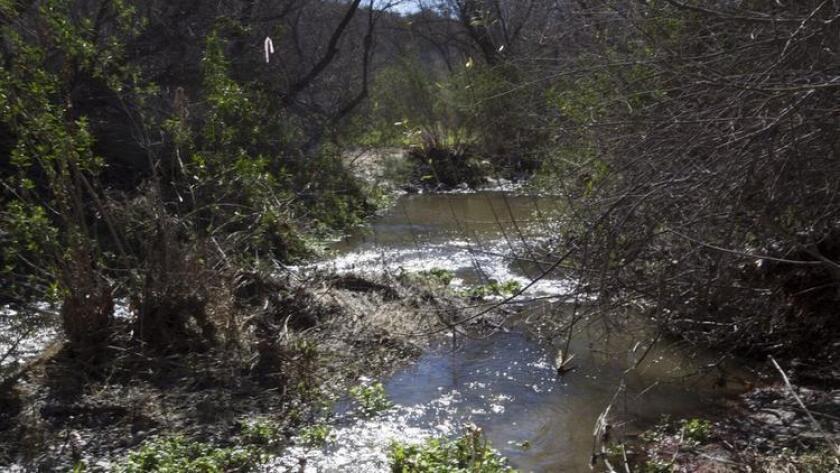 5-sddsd-santa-margarita-river-trail-20160901