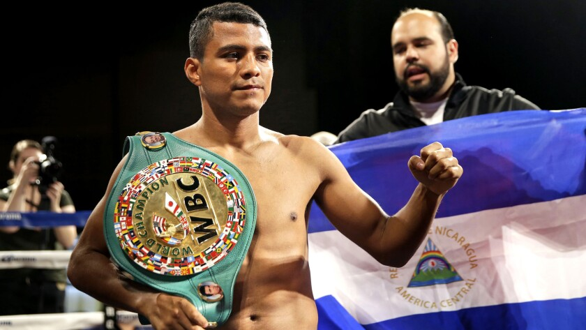 Roman Gonzalez and Brian Viloria set for flyweight title fight - Los Angeles Times