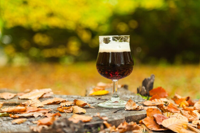 Fall is in the air and so is the effervescence of autmnal brews.