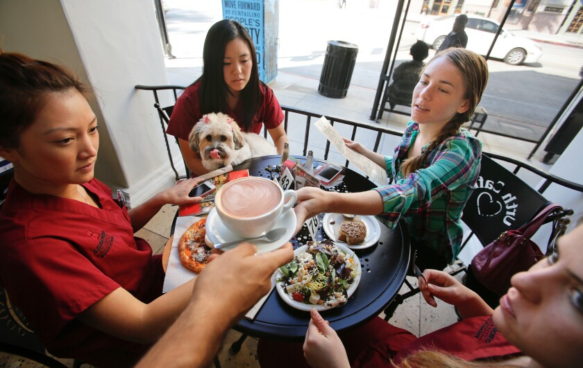 Friends and dog dine together