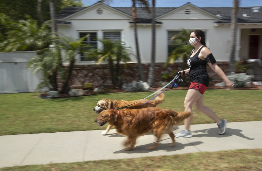 Lindsay Rojas, 28, walks two golden retrievers in Culver City.