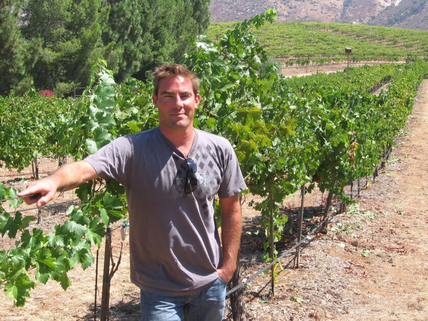 Justin Mund in the vineyard in Orfila in Escondido.