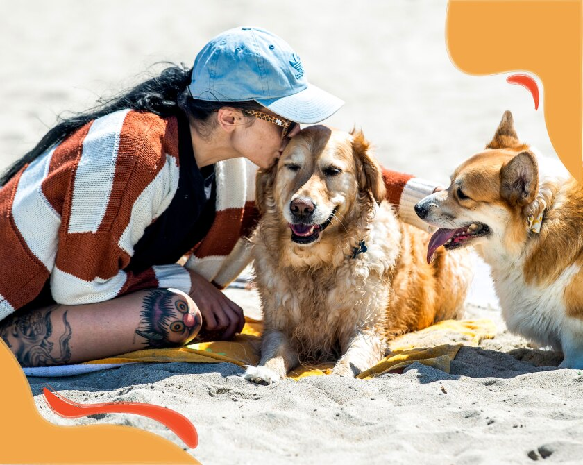 A woman sits on a beach with two dogs, kissing the head of one while petting the other.