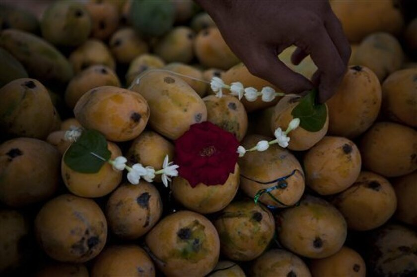 In this Friday, July 23, 2010 photo, a Pakistani fruit vendor puts flowers on mangos to attract customers in fruit market of Islamabad, Pakistan. When U. S. Secretary of State Hillary Rodham Clinton offered Pakistan help this week in exporting mangos to the U.S. for the first time in a bid to dampen anti-American sentiment, it marked the latest chapter in the fruits' curious history of diplomacy and intrigue in the region. (AP Photo/B.K.Bangash)