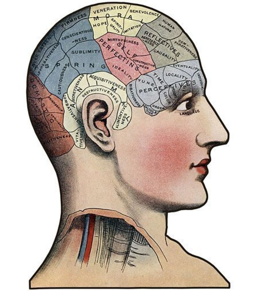 In the 19th century, practitioners of phrenology posited that mental faculties were compartmentalized in the brain and that character could be inferred from head shape. Phrenology has long since been discredited, but two UCSD psychiatrists recently proposed that wisdom may have a neurobiological ba