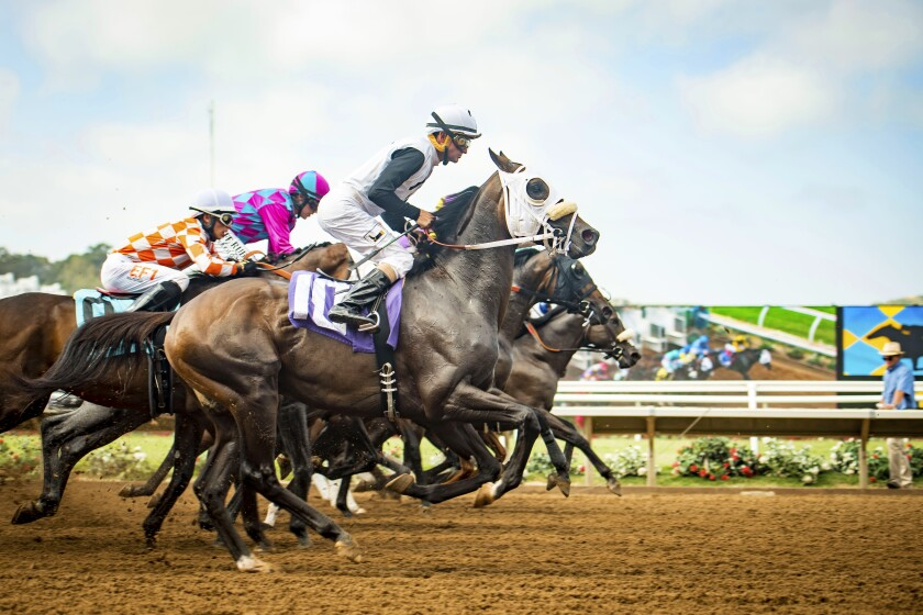 Opening day of the Del Mar horse races is Friday, July 10, with the traditional hats contest being held online.