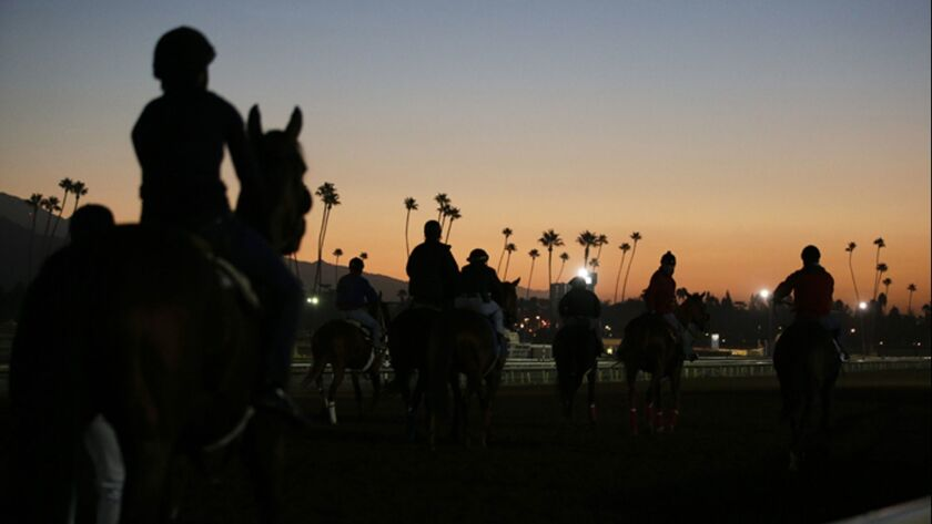 FILE - In this Oct. 28, 2014, file photo, exercise riders and horses walk along the track during mor