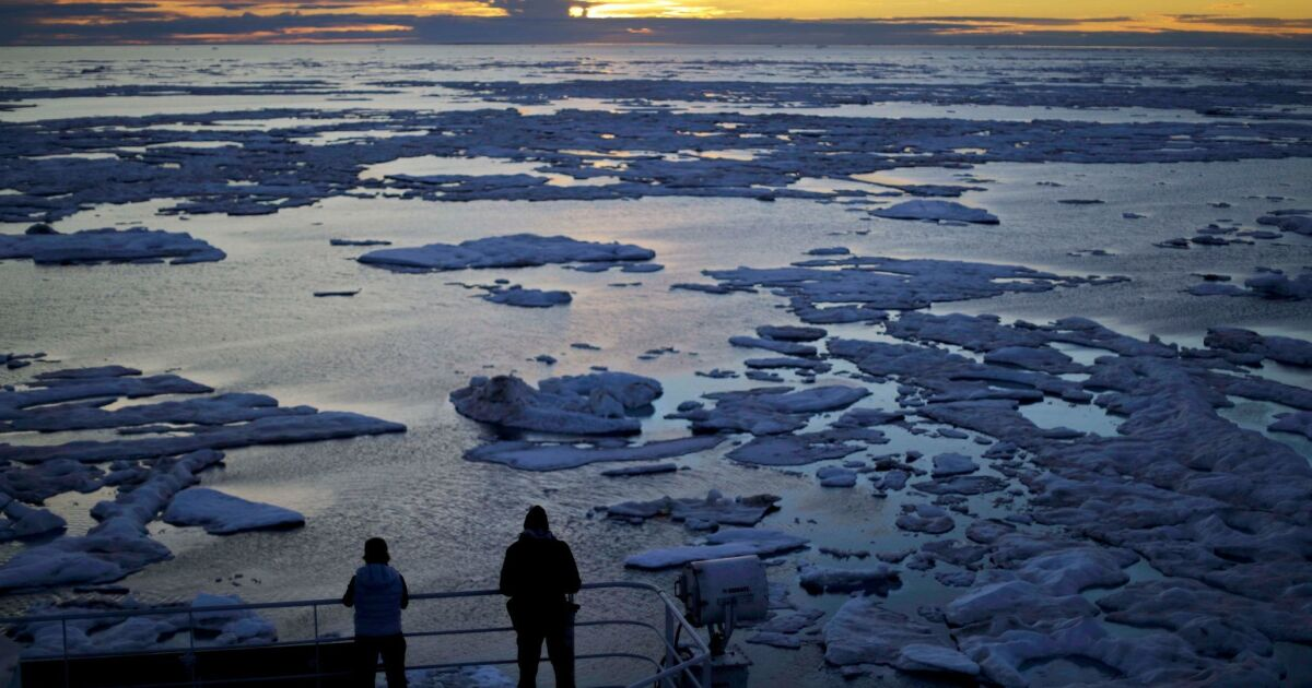 Democratic debate: Candidates' climate change plans - Los Angeles Times