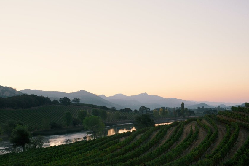 Napa marks Judgment of Paris that put it on wine map - The