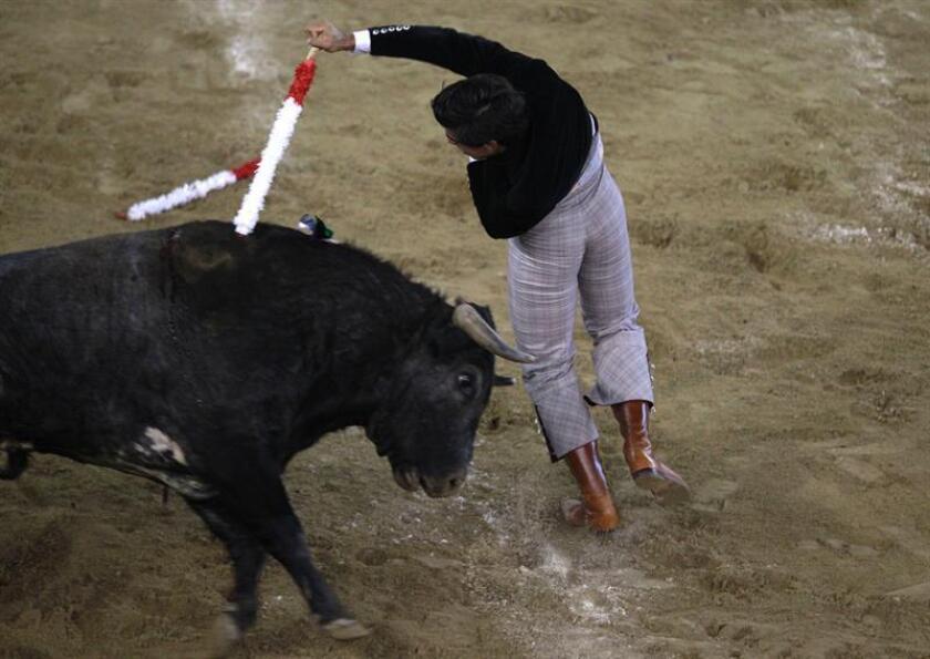 El torero venezolano Jesús Enrique Colombo, pone banderillas al novillo Monarca de la ganadería Salento, durante un festival taurino, hoy en Cali (Colombia). EFE
